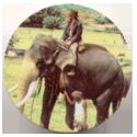 BN Trocs > Indiana Jones > 001-050 BN Troc's 034-Indiana-Jones-on-elephant.