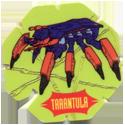 BN Trocs > Spider-man Tarantula.