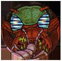 Chupa Caps > Animal 09-Wasp.