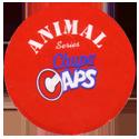 Chupa Caps > Animal Back.