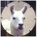 Croky > Crokido's Zoo Caps 08-Lama-Lama.