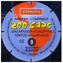 Croky > Crokido's Zoo Caps 09_Back.