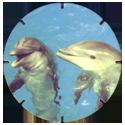 Croky > Crokido's Zoo Caps 12-Tuimelaar-Souffleur.