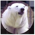 Croky > Crokido's Zoo Caps 13-Ijsbeer-Ours-Polaire.