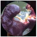 Croky > Crokido's Zoo Caps 17-Dwergnijlpaard-Hippopotame-Nain.