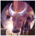 Croky > Crokido's Zoo Caps 25-Buffel-Buffle.