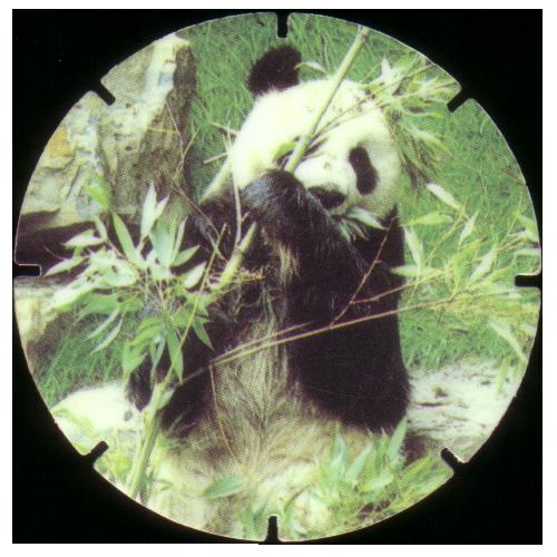 как связать шапку панду со