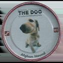 Evercrisp > The Dog 01-Afghan-Hound.