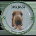 Evercrisp > The Dog 05-Basset-Hound.