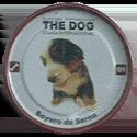 Evercrisp > The Dog 09-Boyero-de-Berna.