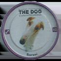 Evercrisp > The Dog 12-Borzai.