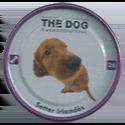 Evercrisp > The Dog 28-Setter-Irlandés.