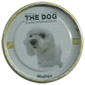 Evercrisp > The Dog 32-Maltés.