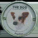 Evercrisp > The Dog 36-Papillon.