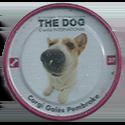 Evercrisp > The Dog 37-Corgi-Gallés-Pembroke.