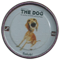Evercrisp > The Dog 42-Sallulez.