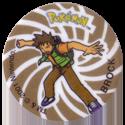 Flippos > Pokemon > Slammers C-Brock.