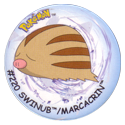 Flippos > Surprise Pokemon 220-Swinub-Marcacrin.
