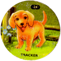 Slammer Whammers > Puppy In My Pocket 24-Tracker.