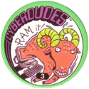 Slammer Whammers > Series 3 > Cyberdudes 03-R.A.M.-it!.