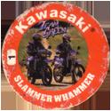 Slammer Whammers > Series 3 > Kawasaki 01-Team-Green.