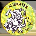 Jots > Grey back Aliskater-2.