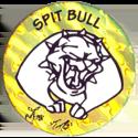Jots > Grey back Spit-Bull-2.