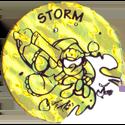 Jots > Grey back Storm-2.