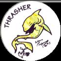 Jots > Grey back Thrasher-2.