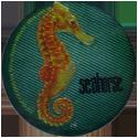 Krome Kaps > 1 Animals 1B-Seahorse.