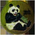 Krome Kaps > 1 Animals 1C-Panda.