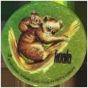 Krome Kaps > 1 Animals 1G-Koala.
