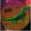 Krome Kaps > 1 Animals 1I-Iguana.