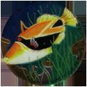 Krome Kaps > 3 Fish 3E.