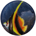 Krome Kaps > 3 Fish 3F.