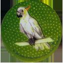 Krome Kaps > 4 Birds 4D.