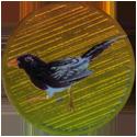 Krome Kaps > 4 Birds 4E.