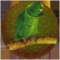 Krome Kaps > 4 Birds 4F.
