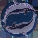 Krome Kaps > 6 Environment 6E-Protect-our-Ocean.
