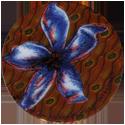 Krome Kaps > 8 Flowers 8D.