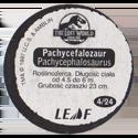 Leaf > Zaginiony Świat: Jurassic Park 04-Pachycefalozaur-Pachycephalosaurus-(back).