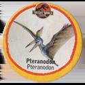 Leaf > Zaginiony Świat: Jurassic Park 10-Pteranodon-Pteranodon.