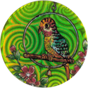 Made in Taiwan > Collect All Designs And Trade With Friends > Various Parrot.