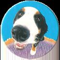 Magic Box Int. > Head First Mad Caps 043-Dog.