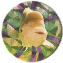 Magic Box Int. > Head First Mad Caps 052-Fish.