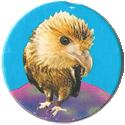 Magic Box Int. > Head First Mad Caps 071-Eagle-(blue-bg).