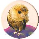 Magic Box Int. > Head First Mad Caps 071-Eagle-(pale-bg).