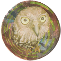 Magic Box Int. > Head First Mad Caps 072-Little-Owl.