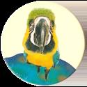 Magic Box Int. > Head First Mad Caps 081-Parrot.