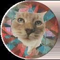 Magic Box Int. > Head First Mad Caps 122-Cat.